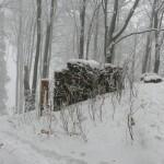 Góry Opawskie - ruiny zamku
